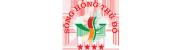 Song hong thu do su dung xe dien Tung Lam