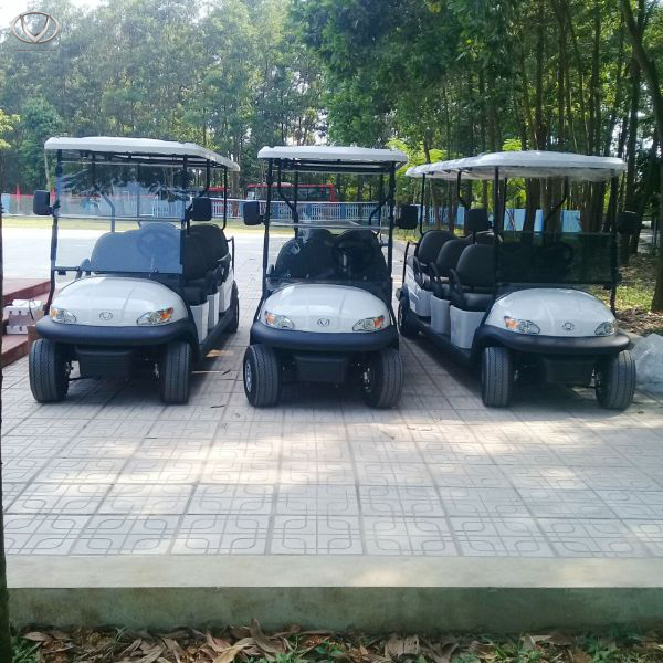 Tùng Lâm cung cấp xe điện cho trường phổ thông chất lượng cao Hùng Vương