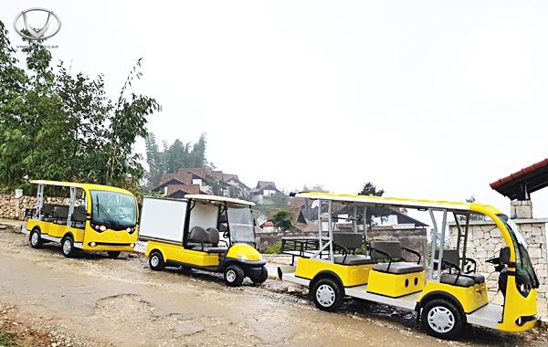 gia-xe-dien-cho-hang-co-dat-khong