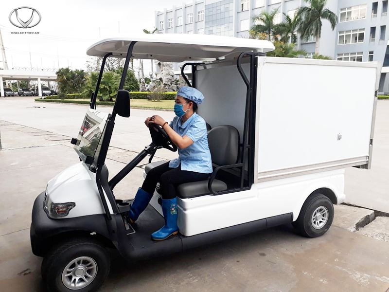 Tùng Lâm xuất xe điện chở hàng
