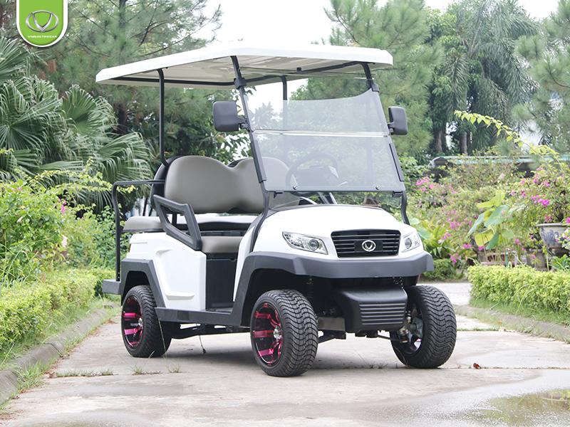Xe điện sân golf giá rẻ có tốt không?